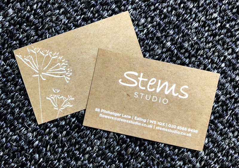 Stems Studio Shop Branding