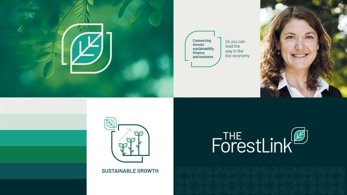 The ForestLink: Branding for start ups